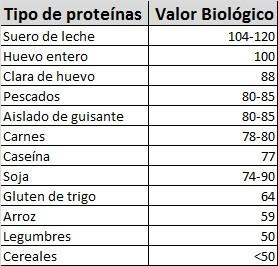 valor biológico proteínas