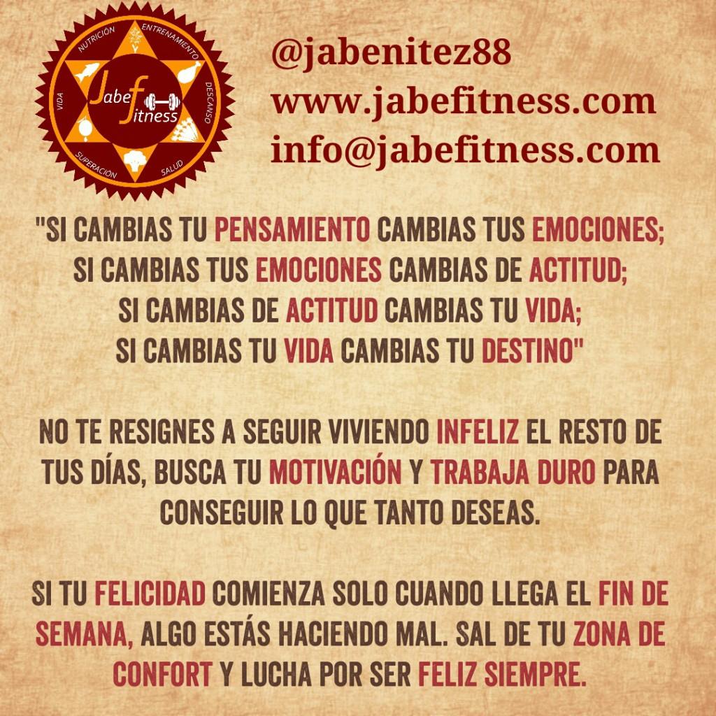 IMG_20131226_100424