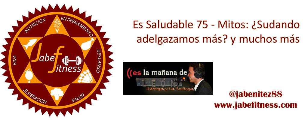recopi-es75