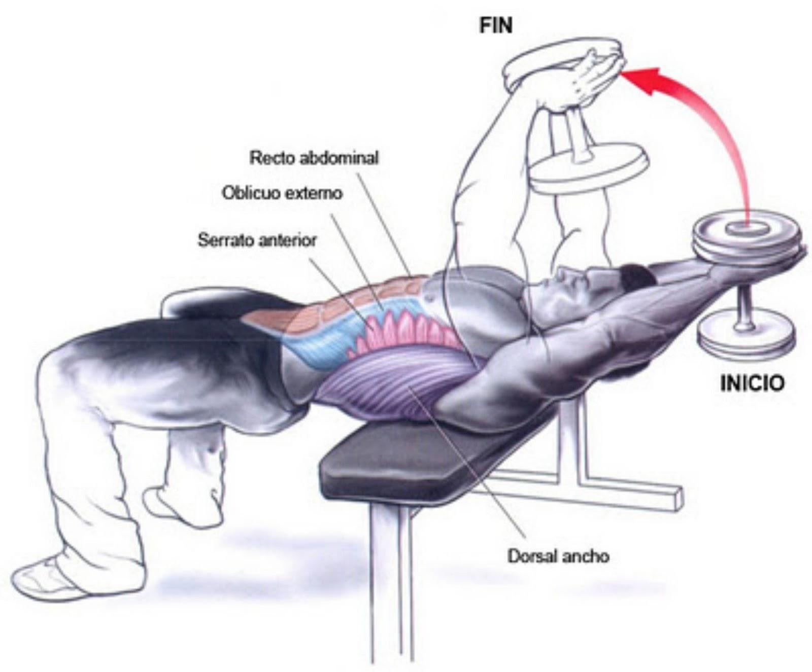 ejercicios hombro y espalda gym