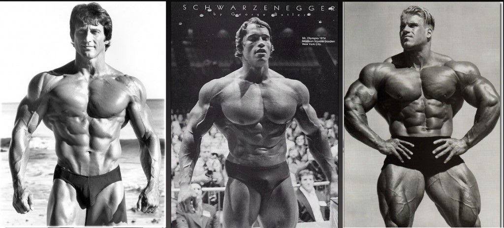 Somatotipos-musculares